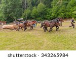 rasnov  romania   july 04  2015 ... | Shutterstock . vector #343265984