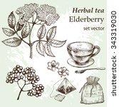 flowers elderberry  twig .... | Shutterstock .eps vector #343319030