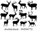 illustration with deer... | Shutterstock .eps vector #34356772