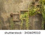 Vertical Garden On Cement Wall
