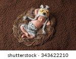 Four Week Old  Newborn Baby Bo...