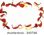 petal frame | Shutterstock . vector #343768