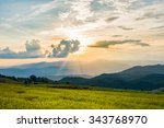 rice fields with sunset at ban... | Shutterstock . vector #343768970