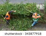 landscaping next to the city... | Shutterstock . vector #343877918