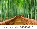 kyoto  japan at the bamboo... | Shutterstock . vector #343886213