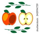 vector fruits illustration.... | Shutterstock .eps vector #343994759