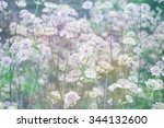 dreamy beautiful background... | Shutterstock . vector #344132600