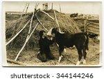 ussr   circa 1980s  an antique... | Shutterstock . vector #344144246