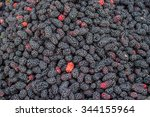 group of mulberry with black... | Shutterstock . vector #344155964