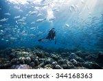 diver underwater | Shutterstock . vector #344168363