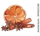 watercolor lemon citrus anise... | Shutterstock . vector #344261168