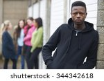 gang of teenagers hanging out...   Shutterstock . vector #344342618