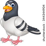 Carton Funny Pigeon Isolated O...