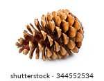 pine cone isolated on white...