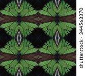 the fascinated velvet green... | Shutterstock . vector #344563370