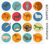 animals mammals icon set.... | Shutterstock .eps vector #344991158