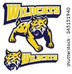 angry wildcat mascot | Shutterstock .eps vector #345151940