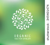 Vector organic and natural emblem and logo design template - green ecology concept or natural cosmetics - circle made with leaves | Shutterstock vector #345401474