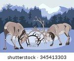 two battling deer in the...   Shutterstock .eps vector #345413303