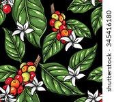 coffee plant pattern 4 | Shutterstock .eps vector #345416180