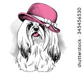 dog york wearing a pink elegant ... | Shutterstock .eps vector #345456530