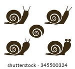 Set Of Snail Icon And Signs