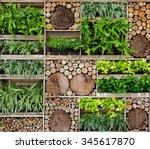 green wall   tree wall | Shutterstock . vector #345617870