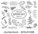 hand drawn branches collection. ... | Shutterstock . vector #345623288