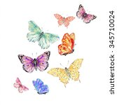watercolor butterfly | Shutterstock . vector #345710024