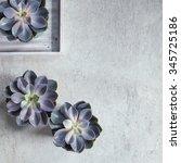 modern  minimalist composition...   Shutterstock . vector #345725186