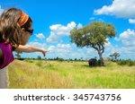 safari in africa  child in car... | Shutterstock . vector #345743756