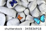 Butterfly And Stones As...
