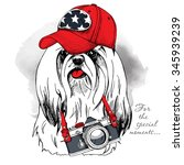 dog york wearing a red cap with ... | Shutterstock .eps vector #345939239