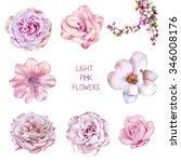 Illustration Of Beautiful Pink...