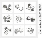 nut icons set | Shutterstock .eps vector #346178333