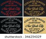 new york  city sports vector... | Shutterstock .eps vector #346254329