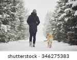 Stock photo man walking with his yellow labrador retriever in winter landscape 346275383