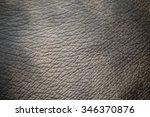 Skin Rough Background.