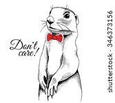 Portrait Of A Gopher In Red Tie....