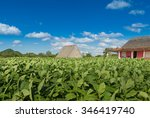 Cuba Tabacco House