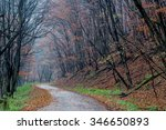 autumn road | Shutterstock . vector #346650893