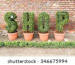 Shop Letters In Pots