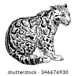 vector illustration. hand drawn ... | Shutterstock .eps vector #346676930
