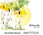 birch forest with the sun  in...   Shutterstock .eps vector #346777223