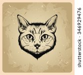 vector cat in tattoo style | Shutterstock .eps vector #346929476