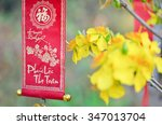 decoration item for lunar new... | Shutterstock . vector #347013704