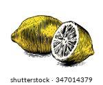 Drawing Of Whole And Half Lemon ...