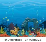 colorful coral reef with fish... | Shutterstock .eps vector #347058323
