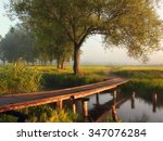 foggy morning on the river | Shutterstock . vector #347076284