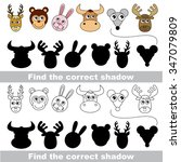 animal collection. find correct ... | Shutterstock .eps vector #347079809